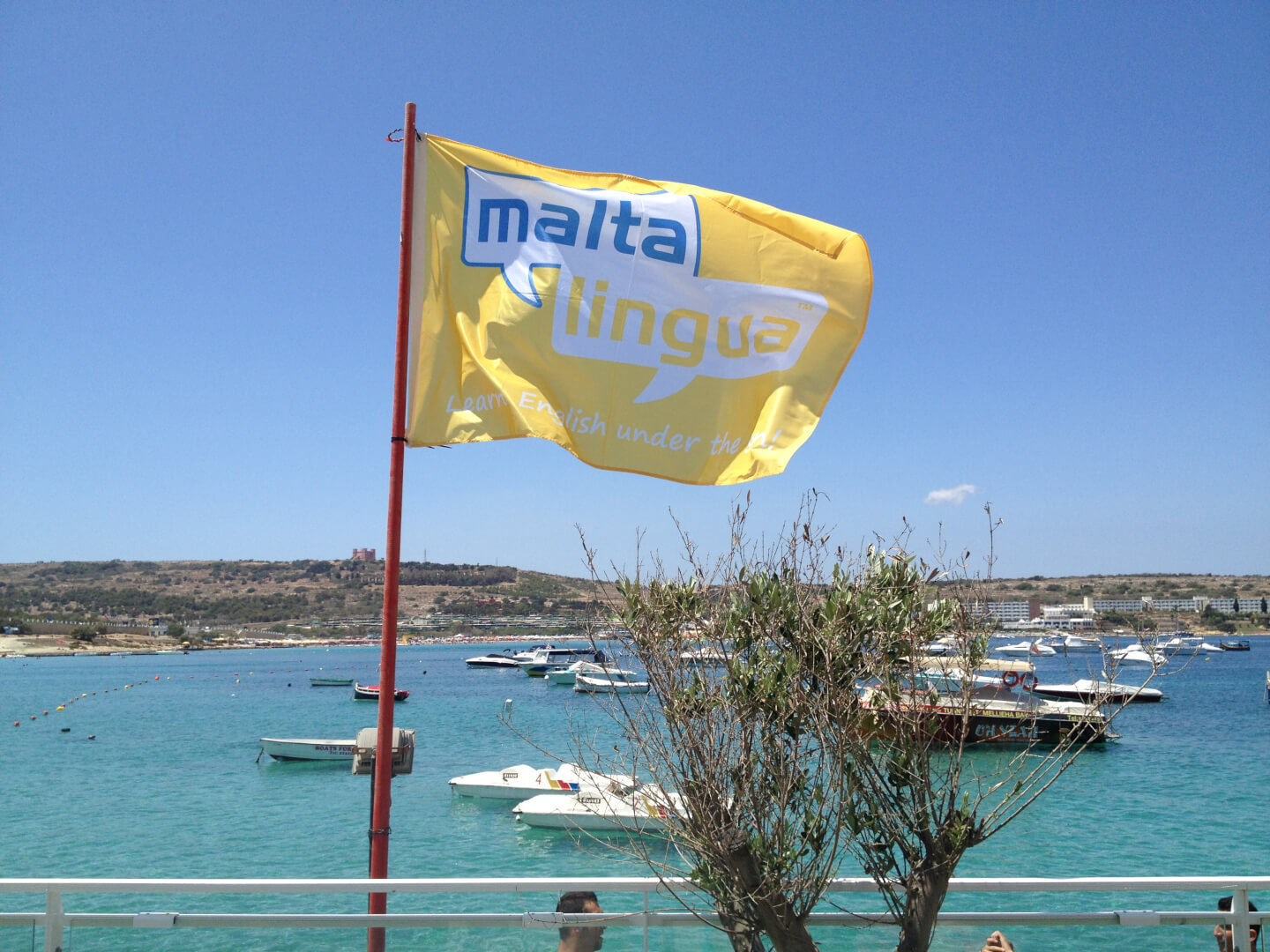 Enjoy Malta with Maltalingua