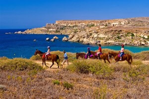 horse riding winter malta